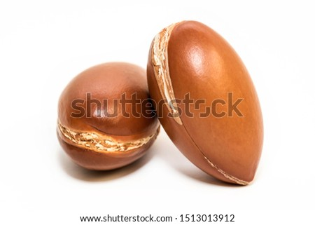 Argan nuts on white background #1513013912