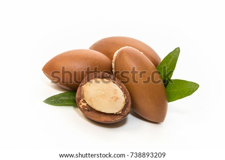 Argan seeds, for the production of oil. Very nutritious for skin and hair #738893209