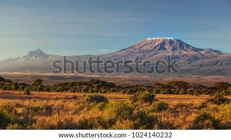 arid dry African savanna in late evening with Mount Kilimanjaro, highest peak i Africa. Amboseli National Park, Kenya