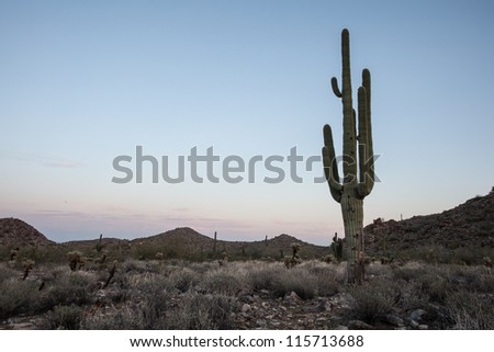 Arid, isolated desert desert scenery of Arizona
