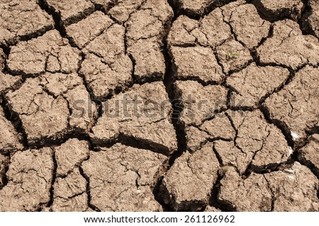 arid lands.cracked earth.