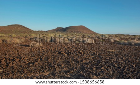 Arid volcanic landscape of Malpais de la Rasca, a natural reserve close to Palm-Mar town, inland views of the volcanic cones with basaltic structure, crumbling  lava rocks and flora and fauna habitats #1508656658