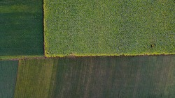 Ariel top view of agriculture field