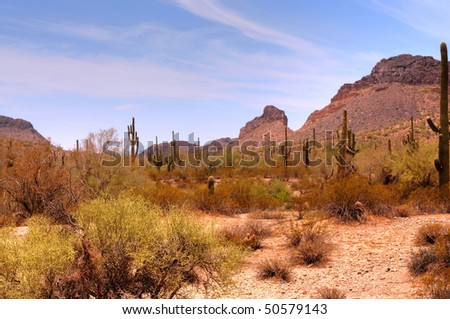 Arizona desert mountain in the spring