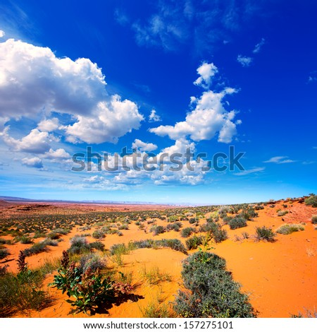 Arizona desert near Colorado river USA orange soil and blue sky