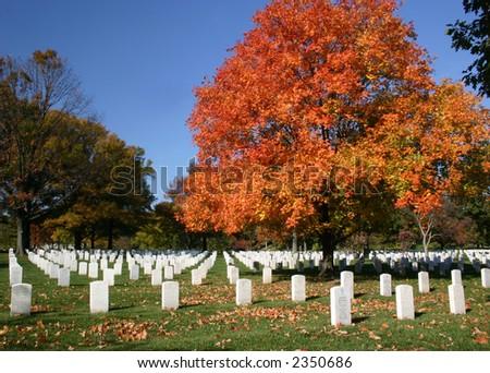 Arlington Cemetery in Autumn