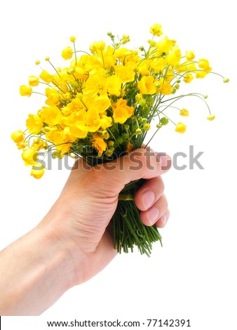 Arm with yellow wild flowers isolated on white background