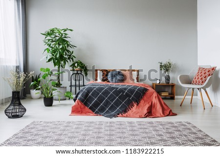 Armchair next to red bed with black blanket in bedroom interior with carpet and plants. Real photo