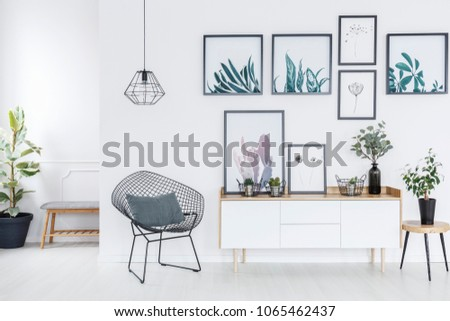 Armchair under lamp next to cupboard with plant against white wall with posters in anteroom interior #1065462437