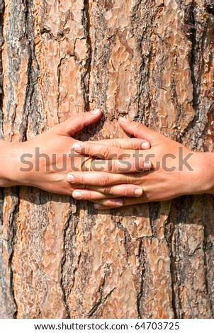 arms wrapped around a tree