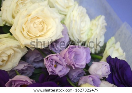 Aroma and fragrance concept. Violet ranunculus and white roses bouquet. Flowers shop. Womens day. Valentines day. Floral background. Buy flowers for gift. Tender bloom. Botany knowledge.