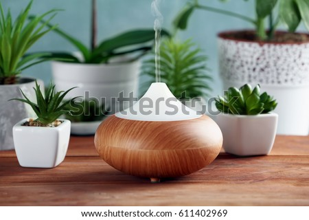 Shutterstock Aroma oil diffuser and plants on table