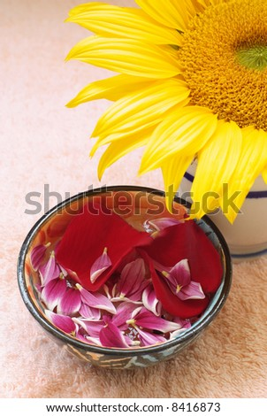 Aromatherapy flower petals in water bowl and sunflower on pink towel