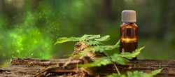 Aromatherapy - space for text. Natural medicine. Homeopathy - banner free space. Natural Therapy