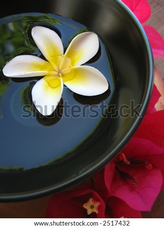 Aromatherapy treatment bowl with flowers and perfumed water.
