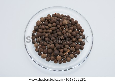 Aromatic allspice isolated #1019632291