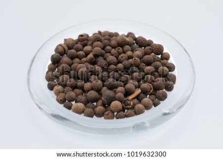 Aromatic allspice isolated #1019632300