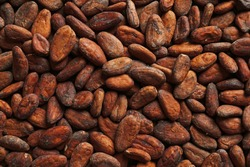 Aromatic cocoa beans as background