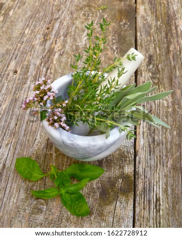 Aromatic culinary herbs. Bunch of fresh green organic herb leaves in marble mortar on old wooden background. Thyme, Sage, Oregano, Basil and Mint closeup. Bundle of freshly picked kitchen herbs.