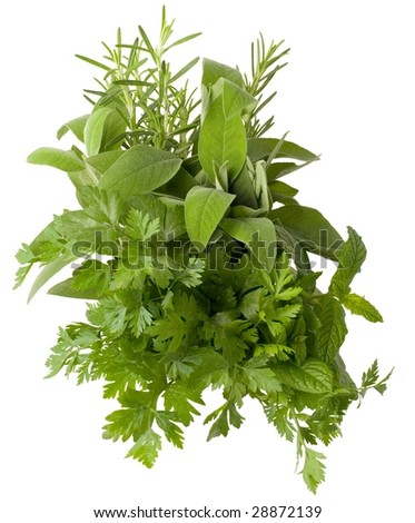 aromatic fresh herbs isolated on white background