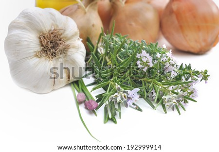 aromatic plants with garlic and onions on white background