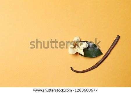Aromatic vanilla stick and orchid flower on color background