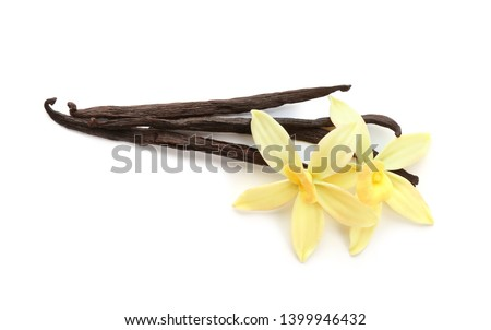 Aromatic vanilla sticks and flowers on white background