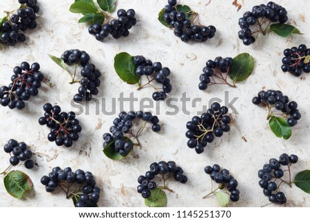 Aronia, commonly known as the chokeberry, with leaves. Freshly picked homegrown aronia berries on table.