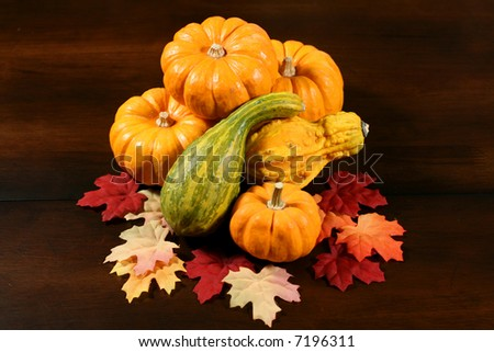 Arrangement of Gourds
