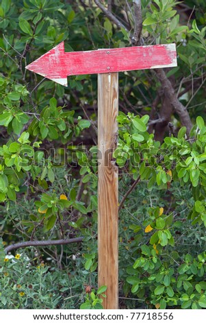Arrow sign painted red, a trail marker in the woods
