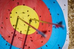 Arrows in archery target on archery range