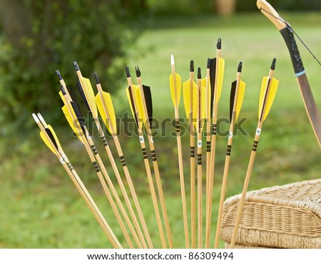 Arrows. Plumage of arrows. - stock photo