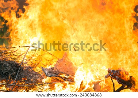 Arson or natural disaster - burning fire flame