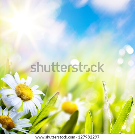 art abstract background spring summer flower in grass with water drops on sun sky