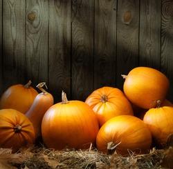 Art autumn Pumpkin thanksgiving background