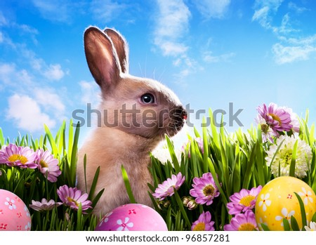 art baby Easter bunny on spring green grass