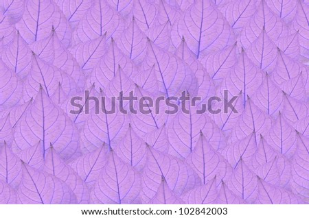 art  background with  violet leaves   , abstract wallpaper