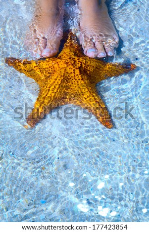 Art Beautiful female legs and starfish on the sea beach