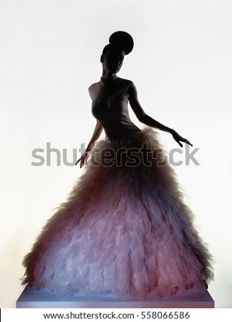 Art fashion studio photo of beautiful elegant woman in luxury evening dress. 
