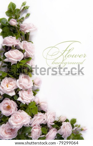 Art flower Background for greeting card #79299064