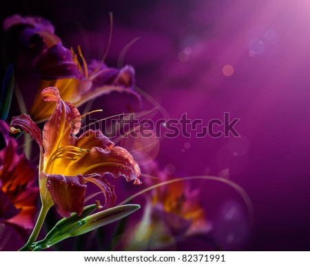 Stock Photo Art Flowers on a red background .With copy-space