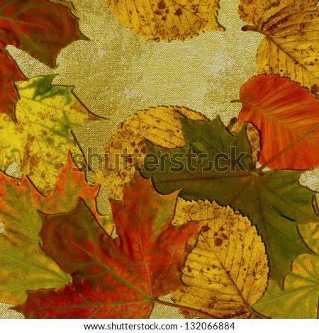art golden autumn leaves background