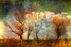 Art grunge creepy landscape showing couple of trees on the wasteland.