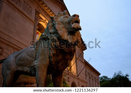 Art Institute of Chicago Lion - Located downtown,one of two lions at the entrance of the museum dating back to 1893 making it the one of the oldest and largest museums in the USA.