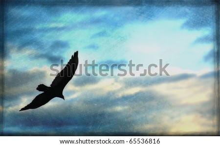 Art montage of eagle soaring in the clouds with grunge overlay ready for copy to be dropped in - stock photo
