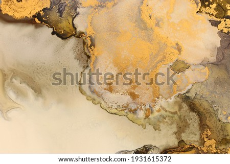 art photography of abstract fluid art painting with alcohol ink, black and gold colors