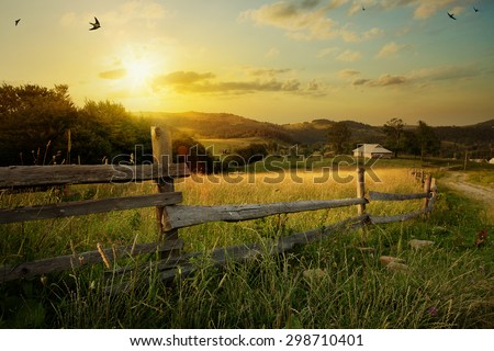 Shutterstock art rural landscape. field and grass