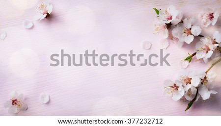 art Spring Blooming; spring flowers on wooden background