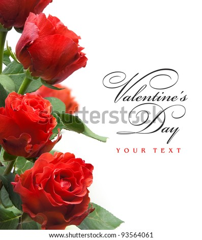 art valentines greeting card with red roses  isolated on white background