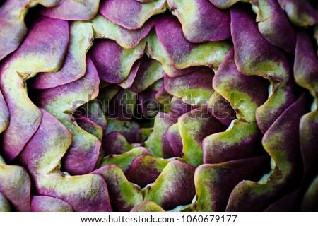 Artichoke photo macro  #1060679177